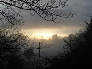 Foggy Dunedin Morning